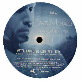 DAVID MORALES WITH LEA LORIEN - HOW WOULD U FEEL (REMIXES)