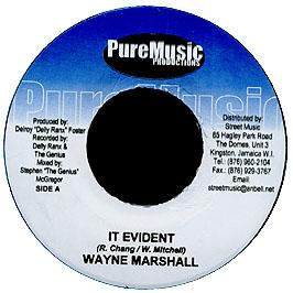 WAYNE MARSHALL - IT EVIDENT