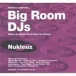 NUKLEUZ PRESENTS - BIG ROOM DJS
