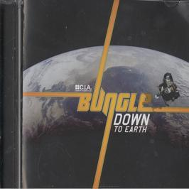 BUNGLE - DOWN TO EARTH