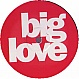 PEARN & BRIDGES (BODYROX) - RUFF BEATS - BIG LOVE 12 - VINYL RECORD - MR143776