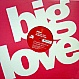 DAJAE - BRIGHTER DAYS (BINI & MARTINI MIXES) - BIG LOVE 21 - VINYL RECORD - MR166749