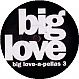 BIG LOVE RECORDS PRESENTS - BIG LOVE A PELLAS 3 - BIG LOVE - VINYL RECORD - MR171735