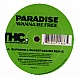 PARADISE - WANNA BE FREE - TURBULENCE HARDCORE 2 - VINYL RECORD - MR216209