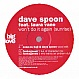 DAVE SPOON FT. LAURA VANE - WON'T DO IT AGAIN (SUNRISE) - BIG LOVE 32 - VINYL RECORD - MR218448