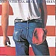 BRUCE SPRINGSTEEN - BORN IN THE USA - CBS - VINYL RECORD - MR239259