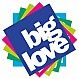 BARGAIN MYSTERY PACK - 5 BIG LOVE RECORDS - BIG LOVE - VINYL RECORD - MR275851