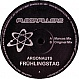 ARGONAUTS - FRUHLINGSTAG - FLOORFILLERS 2 - VINYL RECORD - MR289433