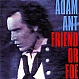 ADAM ANT - FRIEND OR FOE - CBS - VINYL RECORD - MR310940