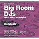 NUKLEUZ PRESENTS - BIG ROOM DJS - NUKLEUZ - CD - MR320854