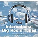 NUKLEUZ PRESENTS - INTERNATIONAL BIG ROOM TUNES - NUKLEUZ - CD - MR320910