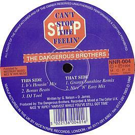 Dangerous Brothers - Can't Stop The Feeling