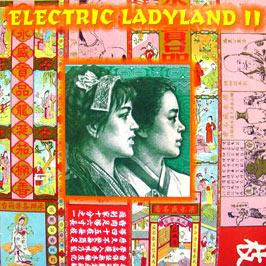 various artists - Electric Ladyland 2