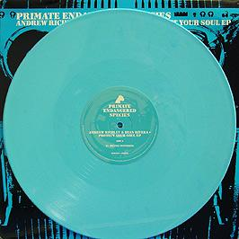 Andrew Richley & Ryan Rivera - Protect Your Soul EP (Blue Vinyl)