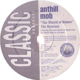 Anthill Mob - You Should Of Known (Remixes)