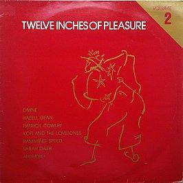 Various - Twelve Inches Of Pleasure (Volume 2)