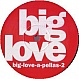 BIG LOVE RECORDS PRESENTS - BIG LOVE A PELLAS 2 - BIG LOVE - VINYL RECORD - MR134216