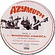AZYMUTH - BIAOZINHO CARIOCA - FAR OUT - VINYL RECORD - MR142011