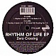 ZERO CROSSING - RHYTHM OF LIFE EP - PERFECT TOY - VINYL RECORD - MR150603