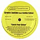 GROOVE JUNKIES FT KATHIE TALBOT - CATCH YOUR SHINE - MORE HOUSE - VINYL RECORD - MR166664