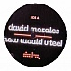 DAVID MORALES - HOW WOULD YOU FEEL - DATA - VINYL RECORD - MR173058
