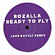 ROZALLA - ARE YOU READY TO FLY (2006 REMIX) - ROZALLA - VINYL RECORD - MR201608