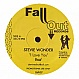 STEVIE WONDER - I LOVE YOU (REMIXES) - FALL OUT RECORDS - VINYL RECORD - MR206181