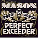 MASON VS PRINCESS SUPERSTAR - PERFECT (EXCEEDER) - DATA - VINYL RECORD - MR217168