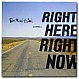 FATBOY SLIM - RIGHT HERE, RIGHT NOW - SKINT - VINYL RECORD - MR26246