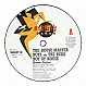 HOUSE MASTER BOYZ & RUDE BOY - HOUSE NATION - MAGNETIC DANCE - VINYL RECORD - MR2779