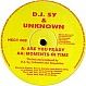 DJ SY & UNKNOWN - ARE YOU READY - HECTIC - VINYL RECORD - MR32583