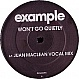 EXAMPLE - WON'T GO QUIETLY (JUAN MACLEAN MIXES) - DATA - VINYL RECORD - MR331741