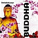 VARIOUS ARTISTS - DESTINATION LOUNGE - BUDDHA - REVIVE THE SOUL - CD - MR342413