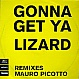 MAURO PICOTTO - LIZARD REMIXES 99 - VC RECORDINGS - VINYL RECORD - MR35869