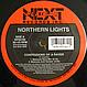 NORTHERN LIGHTS - CONFESSIONS OF A RAVER - NEXT PLATEAU - VINYL RECORD - MR417749