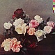 NEW ORDER - POWER CORRUPTION & LIES - FACTORY - VINYL RECORD - MR48627
