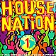 VARIOUS ARTISTS - HOUSE NATION - REACT - VINYL RECORD - MR5469