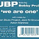 UBP - WE ARE ONE - SOUL FURIC - VINYL RECORD - MR70324
